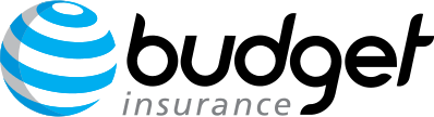 Budget Insurance Pure Life Cover by 1Life